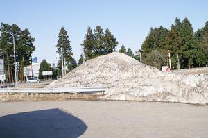 2010_04250021