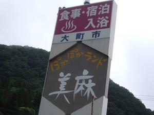 2010_06270003